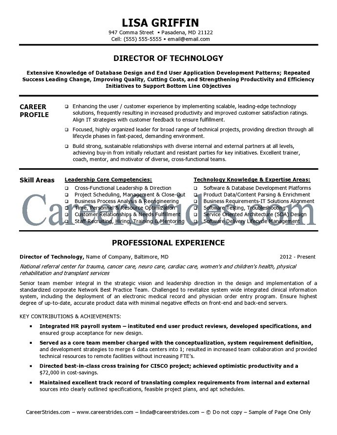 resume of it director 28 images exle information