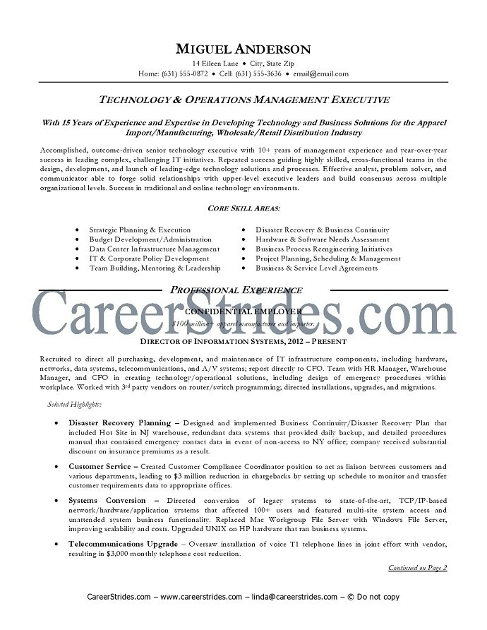 information technology resume sample information